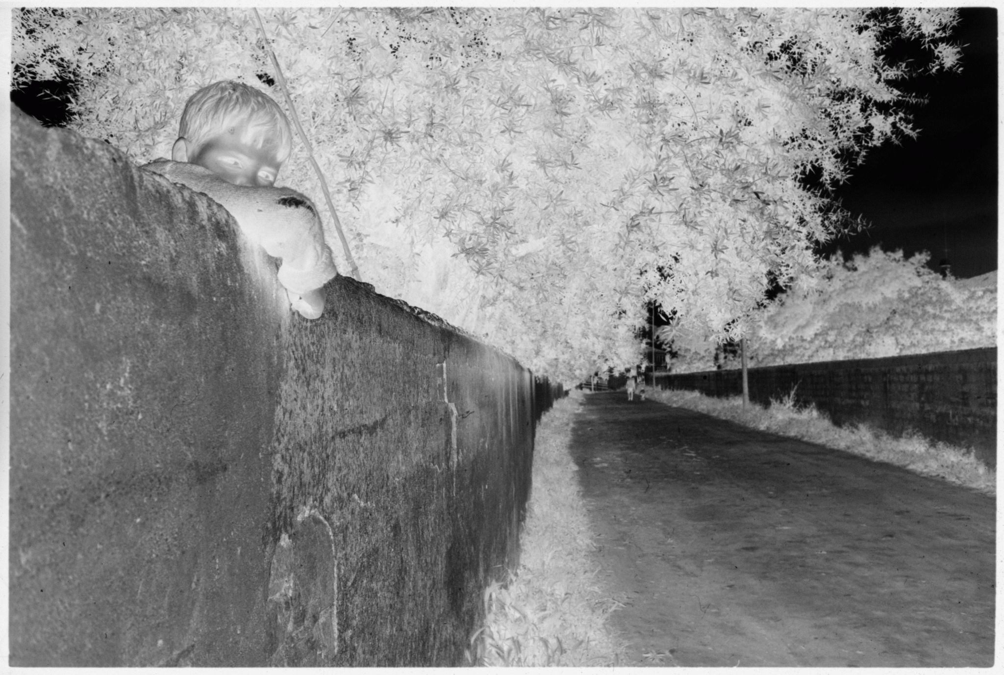 Untitled (Young Boy Peering Over Wall On Side Of Road)