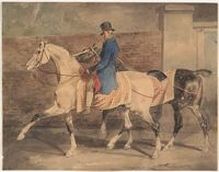 Groom And Horses