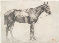 Horse With Saddle And Bridle