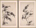 Bamboo Through The Four Seasons