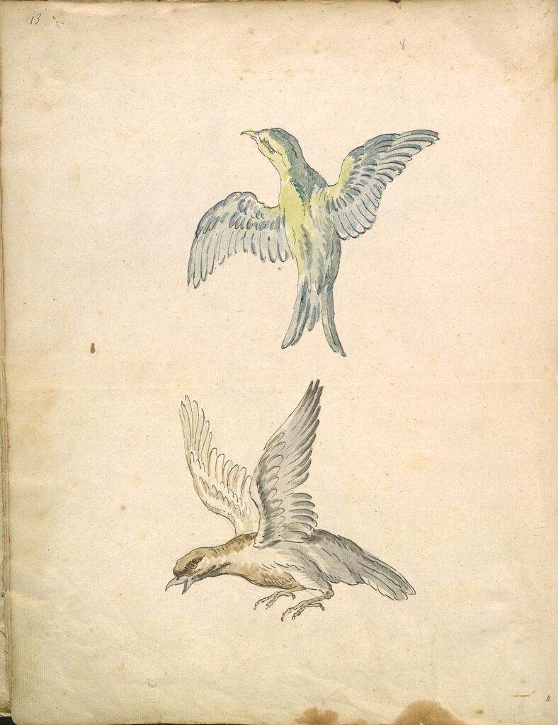 Folio Recto: Blank; Verso: Two Birds In Flight