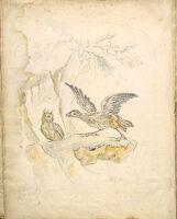 Folio Recto: Blank; Verso: Bird Confronting An Owl Before A Cave