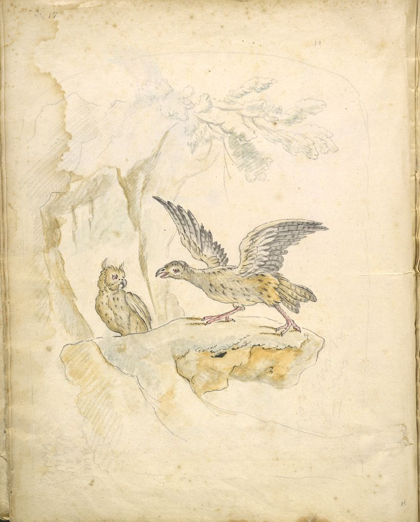Folio Recto: Blank; Verso: Bird Confronting An Owl Before A Cave