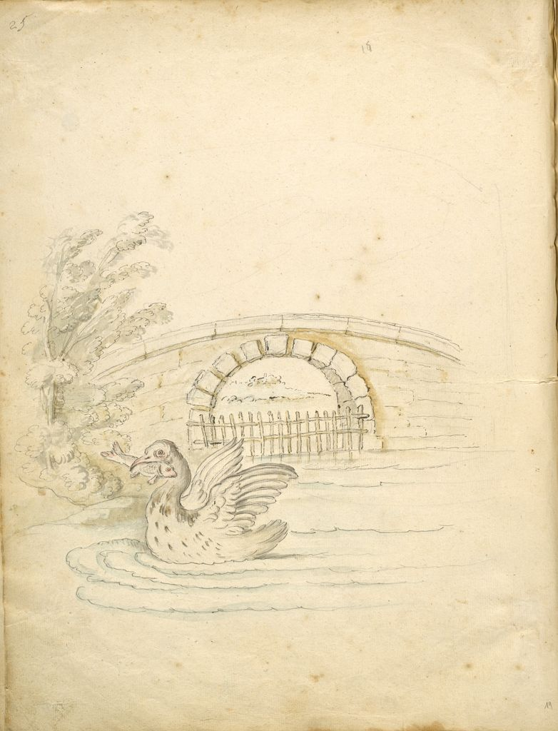 Folio Recto: Blank; Verso: Swan Transporting A Fish In A Landsape
