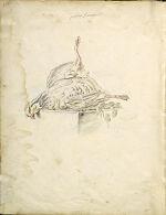 Folio recto: Blank; verso: Dead Red Partridge