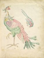 Standing Peacock And Small Perched Bird; Verso: Blank