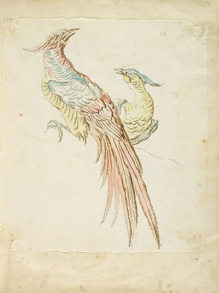Two Perched And Squawking Pheasants; Verso: Blank