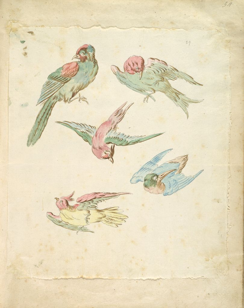 Five Birds, One Perched, Four In Flight; Verso: Blank