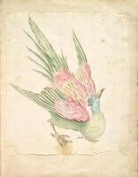 Hunched Bird Looking Upward; Verso: Blank