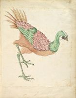 Striding Bird; Verso: Blank