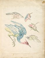 Heron And Four Perched Birds; Verso: Blank