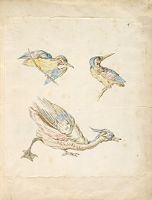 Two Perched Birds And A Duck; Verso: Blank