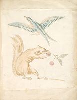 Squirrel Eating Cherries And Bird With Wings Extended; Verso: Blank
