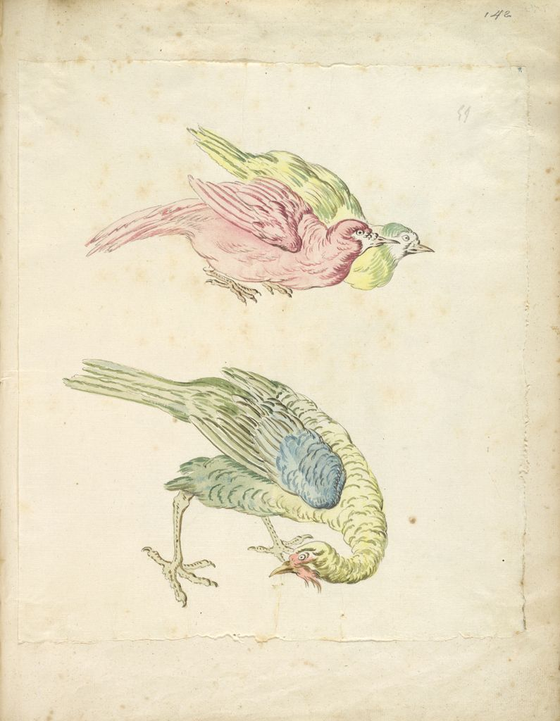 Three Birds, Two Hunched Together And One Looking Back To The Left; Verso: Blank