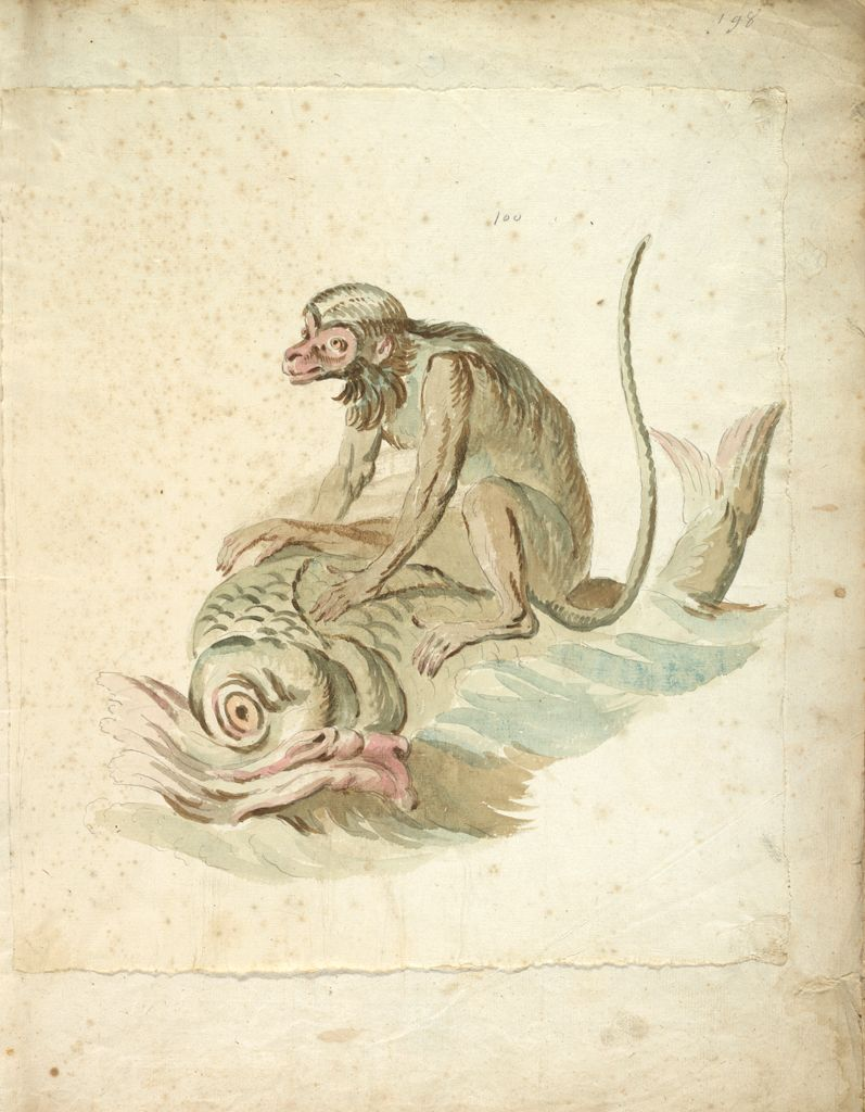 Monkey Riding A Dolphin; Verso: Blank