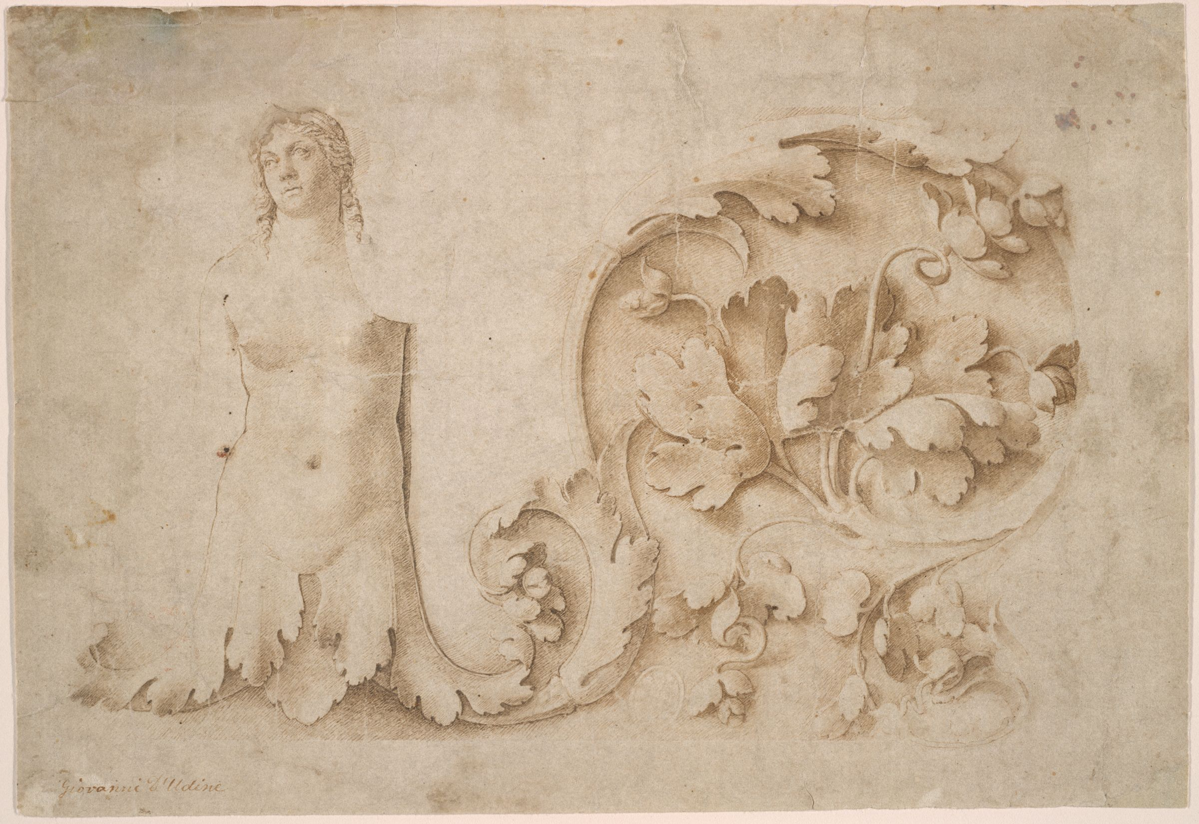 Study For A Frieze With Siren And Acanthus