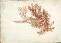 Sheet Of Studies; Verso: Tree