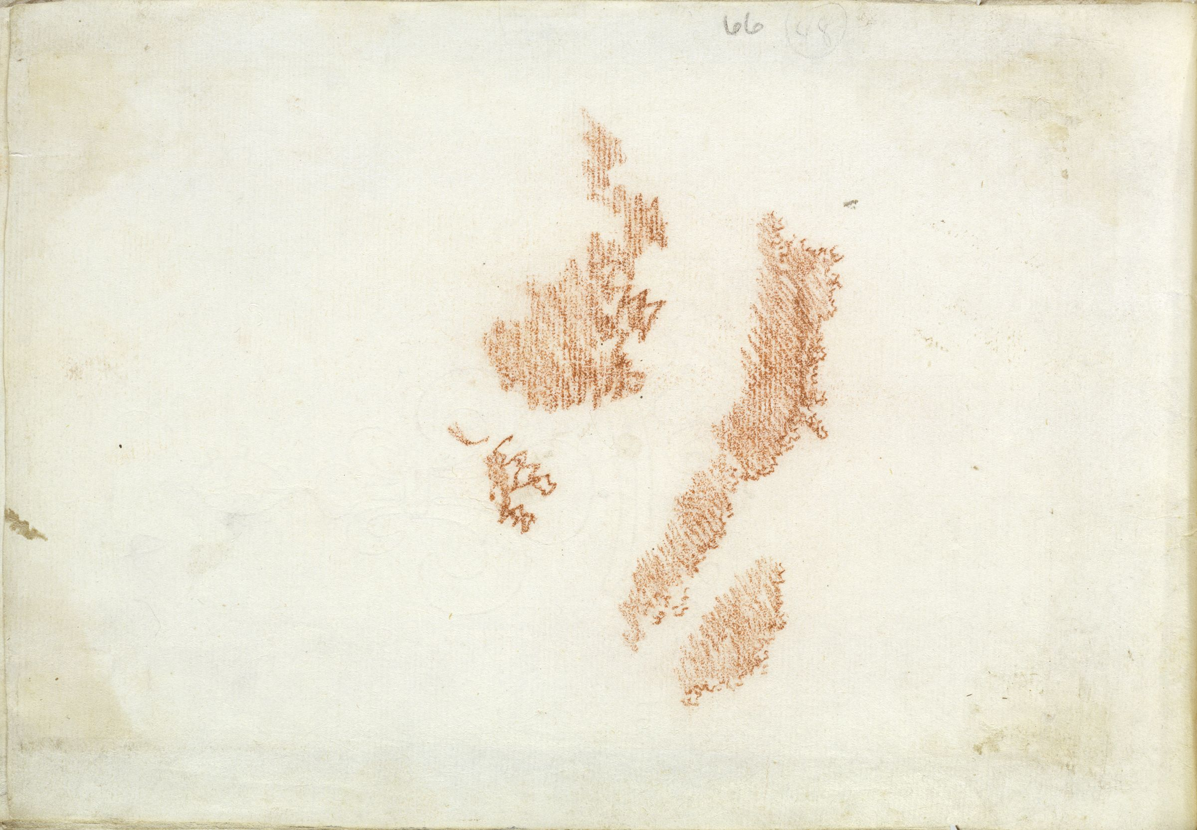 Blank Page; Verso: Foliage Studies