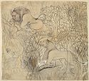 Young Durjan Sal Slays A Lion