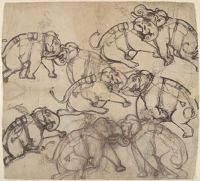 Five Views Of An Elephant Combat