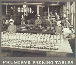 Industrial Problems, Welfare Work: United States. Pennsylvania. Pittsburgh. H. J. Heinz Company: Preserve Packing Tables..   Social Museum Collection