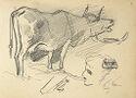 Cow; Human Head; Verso: Studies Of A Woman In A Headdress