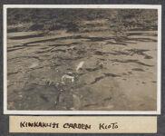 Work 15 of 63 Title: Kinkakuji garden, Kioto Creator: Stillman, E. G. Date: 1905?