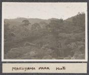 Work 52 of 63 Title: Maruyama Park, Kioto Creator: Stillman, E. G. Date: 1905?