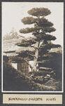 Work 56 of 63 Title: Kinkakuji garden, Kioto Creator: Stillman, E. G. Date: 1905?