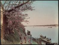 Work 14 of 52 Title: Mukojima, Tokio Creator: Farsari, Adolfo Date: 1886?