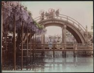 Work 19 of 52 Title: Wisteria and first bridge temple (Kameid... Date: ca. 1890