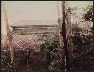 Work 34 of 52 Title: Maple Club, Shiba Park, Tokyo Date: ca. 1890