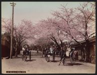 Work 41 of 52 Title: Noge Hill at Yokohama (spring) Date: ca. 1890