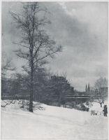 A Winter Sky - Central Park