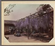 Work 18 of 29 Title: Wistaria [sic] tea house, Kioto Date: ca. 1890
