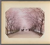 Work 24 of 50 Title: Cherry trees and rickshaws Date: ca. 1890