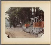 Work 34 of 50 Title: Road to shrine at Nikko Date: ca. 1890