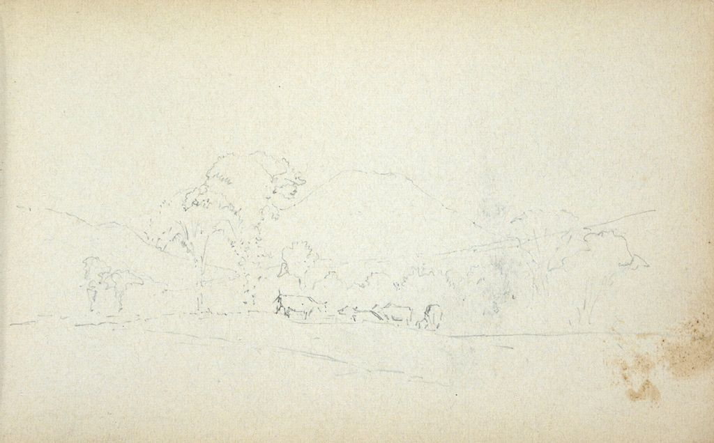 Landscape With Sheep; Verso: Blank Page