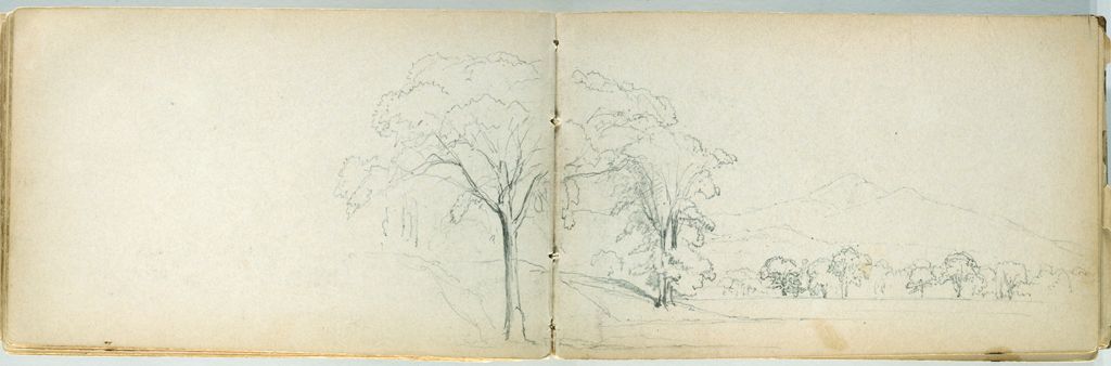 Partial Landscape With Trees; Verso: Cattle In A Landscape
