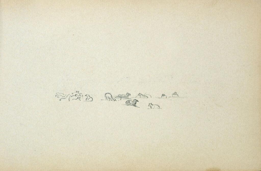 Sheep; Verso: Partial Landscape