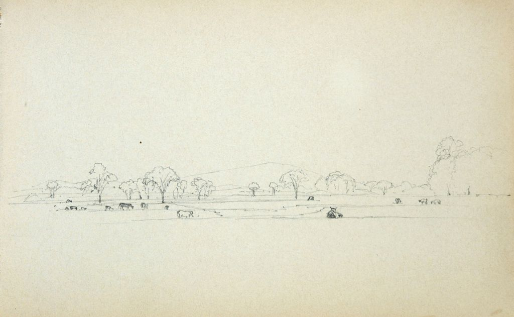 Cattle In A Landscape; Verso: Blank Page