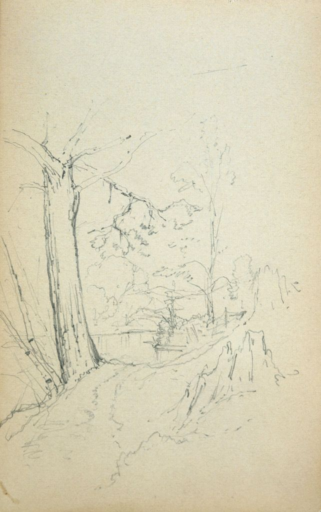 Trees In A Landscape; Verso: Blank Page