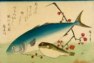 Yellowtail (Inada), Blowfish (Fugu) and Prunus (Ume), from the series A Shoal of Fishes (Uo-zukushi)