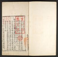 Illustrated Guide to the Two Relations (I-ryun Haeng-sil To), Volume 1: Brothers