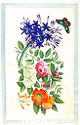 Album Of Chinese Export Paintings: Flowers