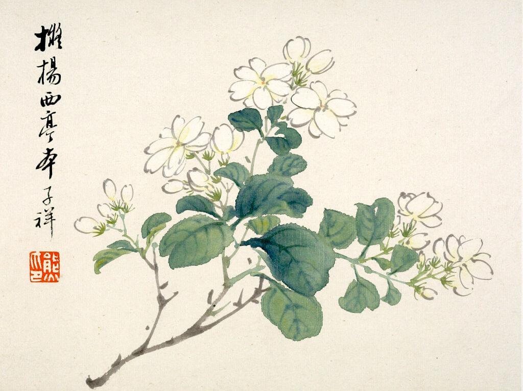 Flowers (One Of Twelve Album Leaves)