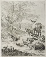 The Resting Herd
