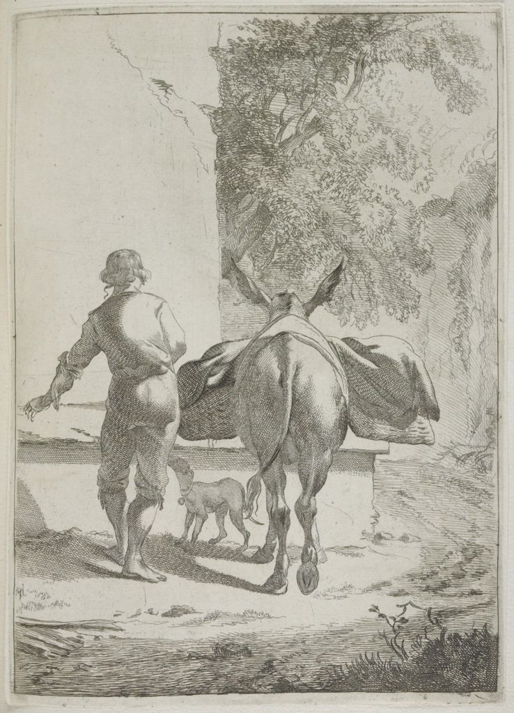 Donkey With Boy At A Trough, Seen From Behind