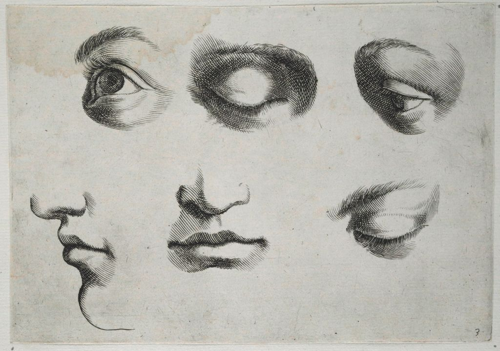 Four Eyes And Two Mouths-And-Noses