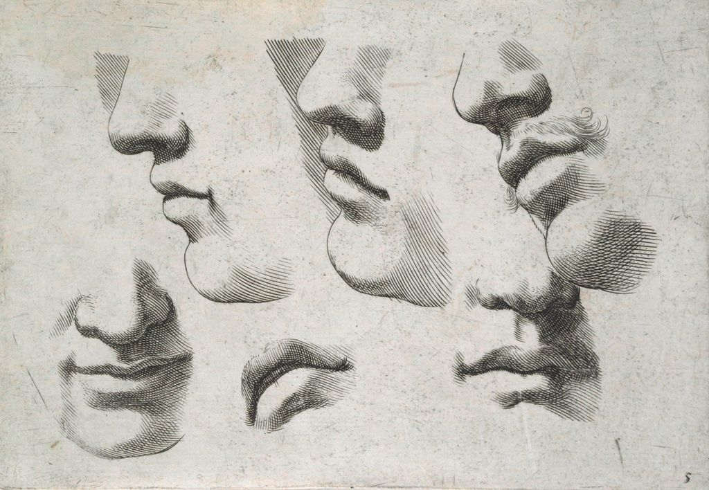 Parts Of Four Faces, A Mouth, And A Mouth-And-Nose